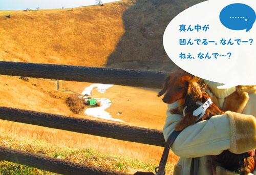 2015-02-izu87.jpg