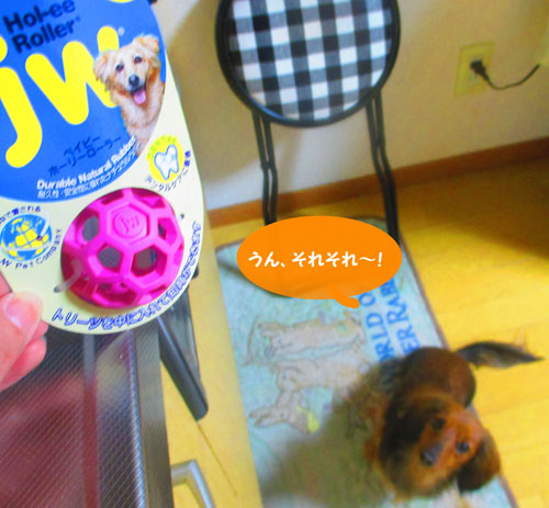 2015-03-toy3.jpg