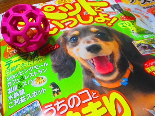 2015-03-toy6.jpg