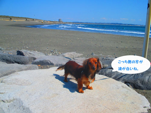 2015-03-umi7.jpg