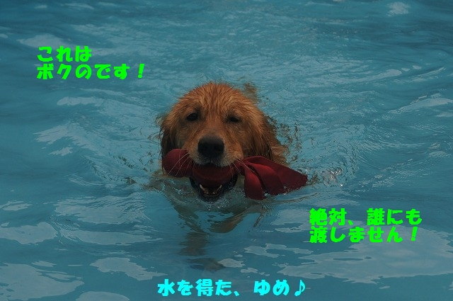 20141227112027ecb.jpg