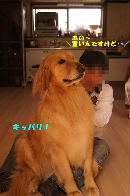 DSC04057.jpg