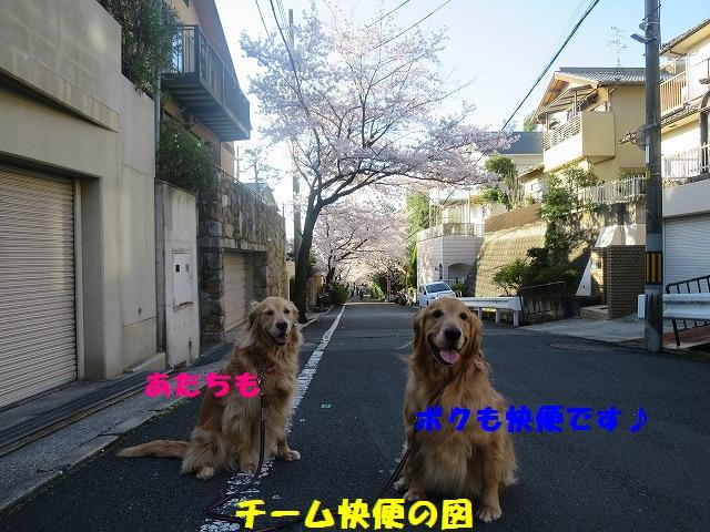 IMG_3314.jpg