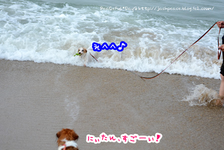 150709_umi8.jpg