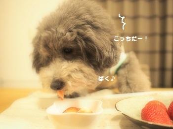 うちの子記念日デザート4