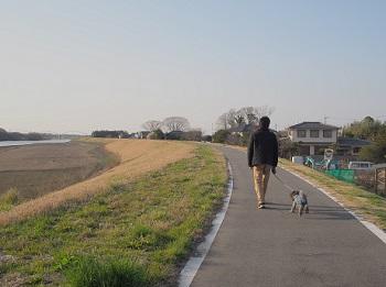 川さんぽ20150321-1