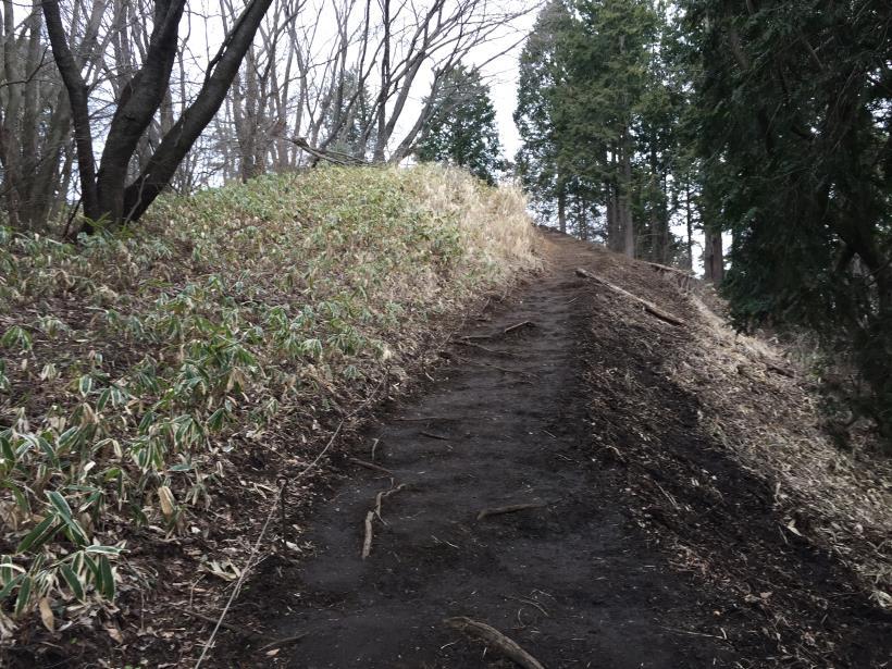 doudokoroyama06.jpg