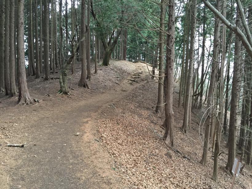 doudokoroyama19.jpg
