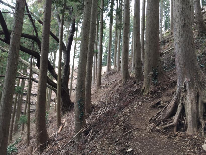 kagenobuyama15.jpg