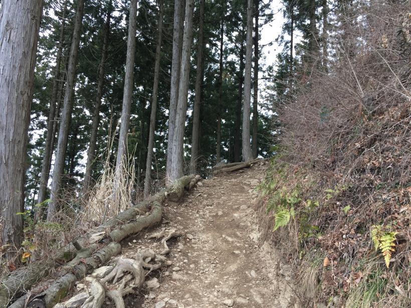 kagenobuyama22.jpg