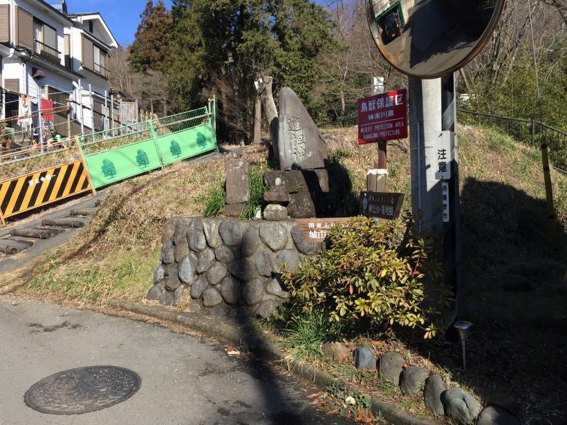 tukuisiroyama14.jpg