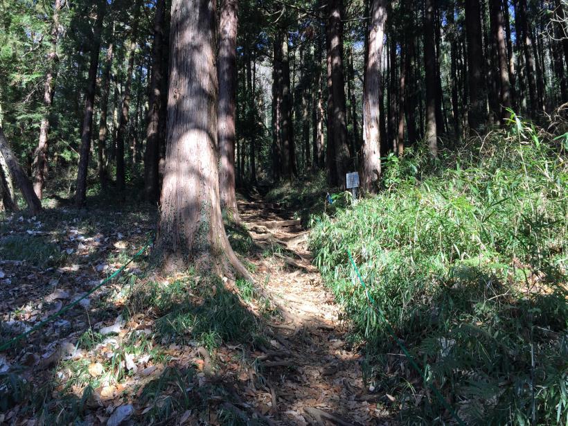 tukuisiroyama33.jpg