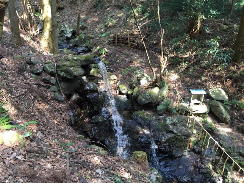 yagosawa02.jpg