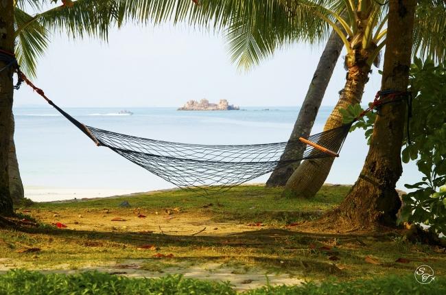 hammock-457311_1280.jpg