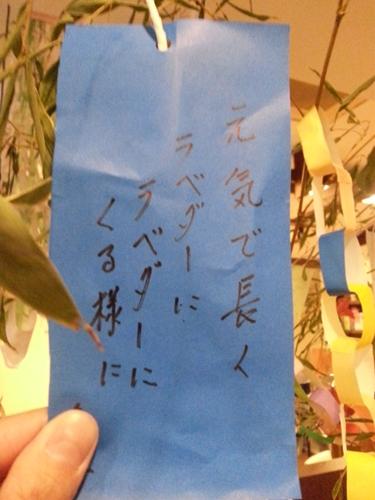 20150706_165812_R.jpg