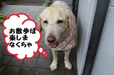 IMG_3479.jpg