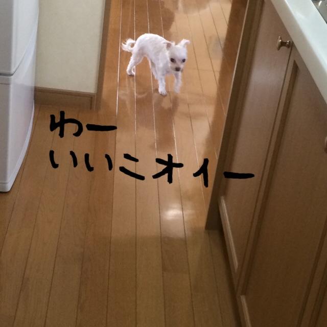 150427_5.jpg