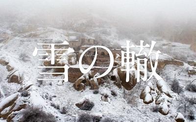 YUKINOWADACHI.jpg