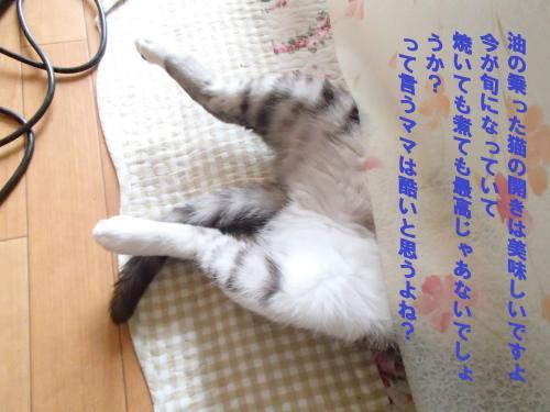 P4060536_convert_20150407120603.jpg