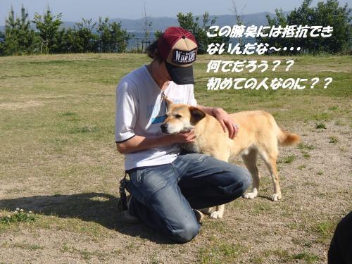 P5200009_convert_20150521093139.jpg