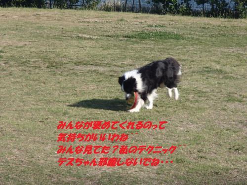 P5200012_convert_20150521093231.jpg