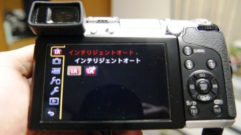 P1120542 - コピー - コピー