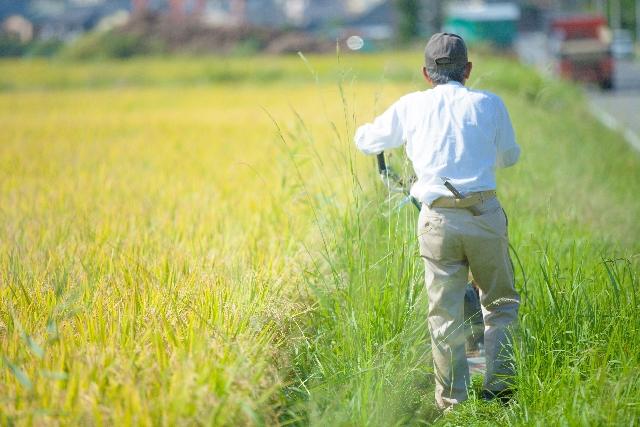 【食べて応援】福島の山積み汚染土置き場の横で「米の稲刈り」してるんだが…これヤバすぎだろ、ワロタ