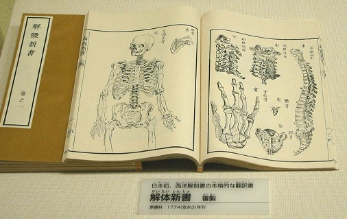 First_Japanese_treatise_on_Western_anatomy.jpg