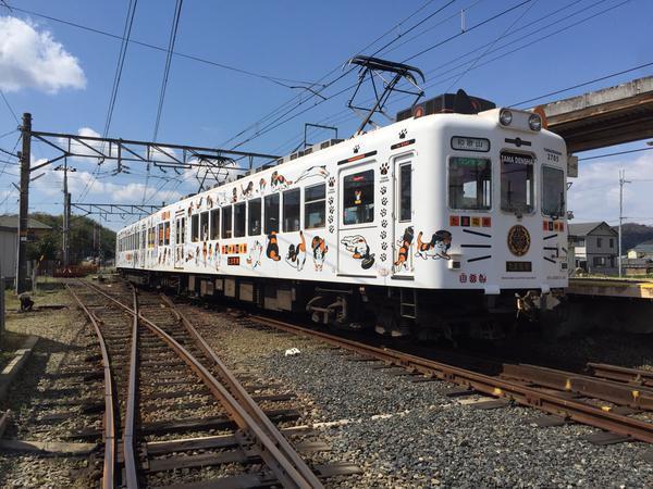 たま電車5
