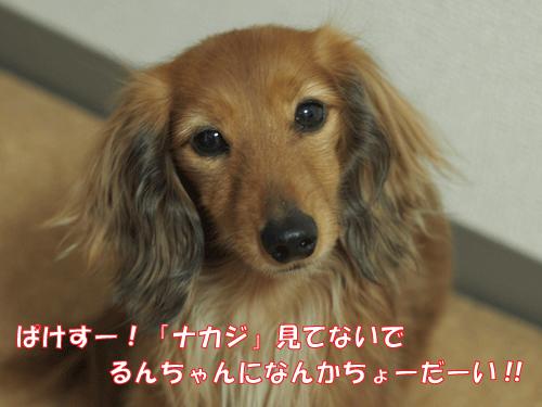 150327-02.jpg