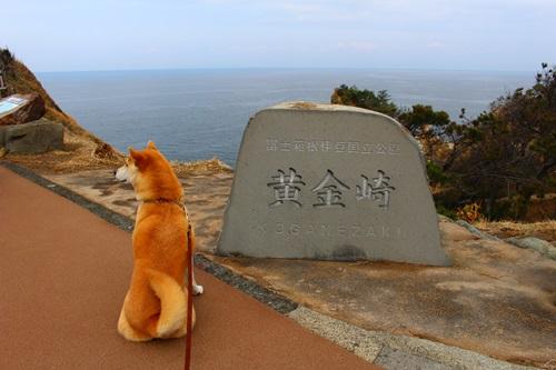 西伊豆・黄金崎を散策(岩が馬に見える!!)