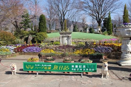 ハーブ庭園2