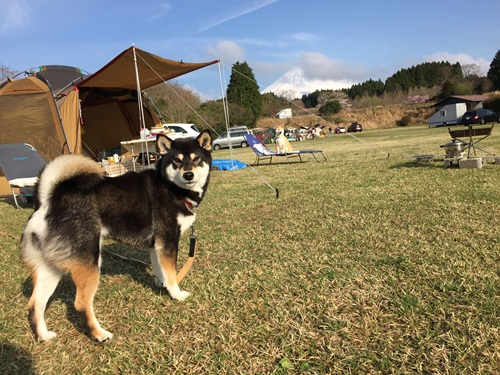 キャンプ2日目5