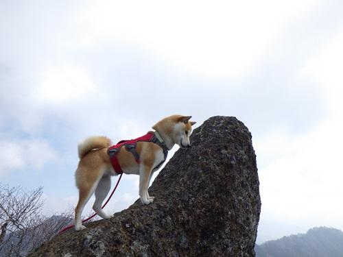 鬼ヶ岳19