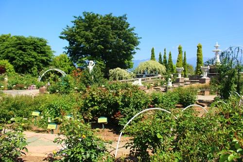 ハーブ庭園旅日記17