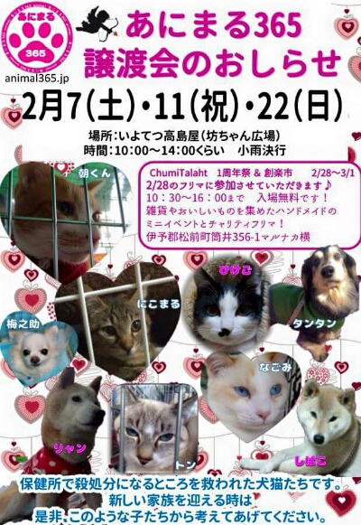 fc2_2015-01-28_12-47-34-460.jpg