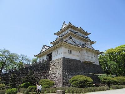 小田原城公園 (11)