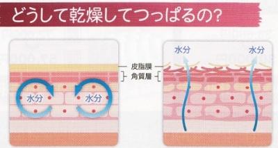満足度98%!アトピー、敏感肌、乾燥改善に!細胞再生力を持つ【サラヴィオ活性美容液】