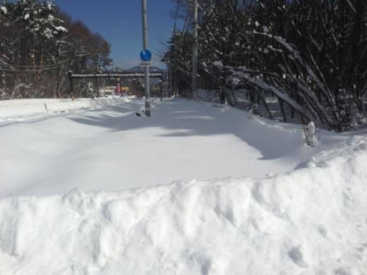 2度目の雪 (2)