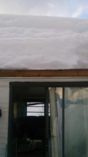 2度目の雪 (3)