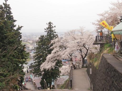 20150523・桜19・0420・飯盛山