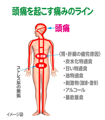 zutu-line1.jpg