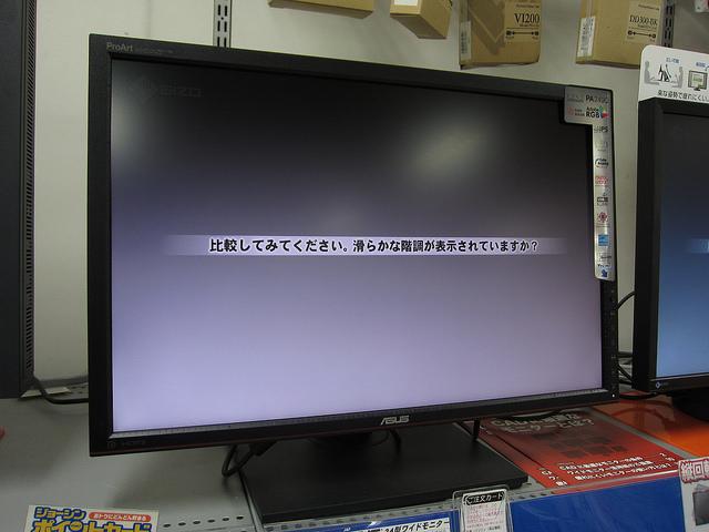 PA249Q_23.jpg