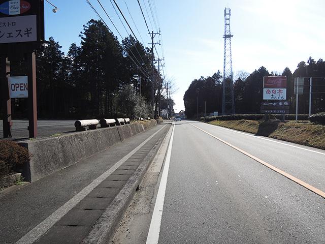 DSCN4990.jpg